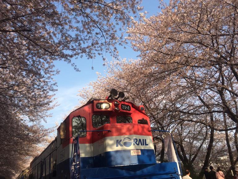 Gyeonghwa Station | Courtesy of Abby Narishkin