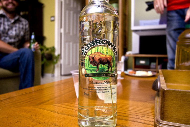 Zubrowka – Polish vodka