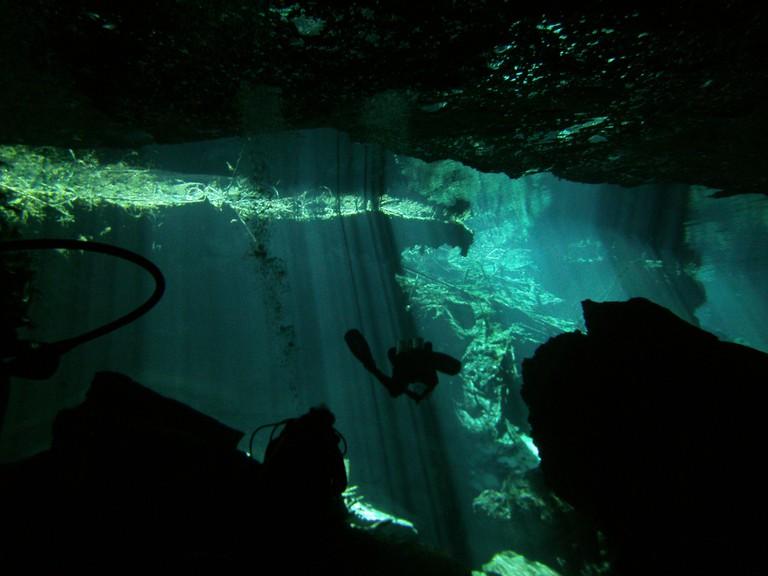 Go cenote diving