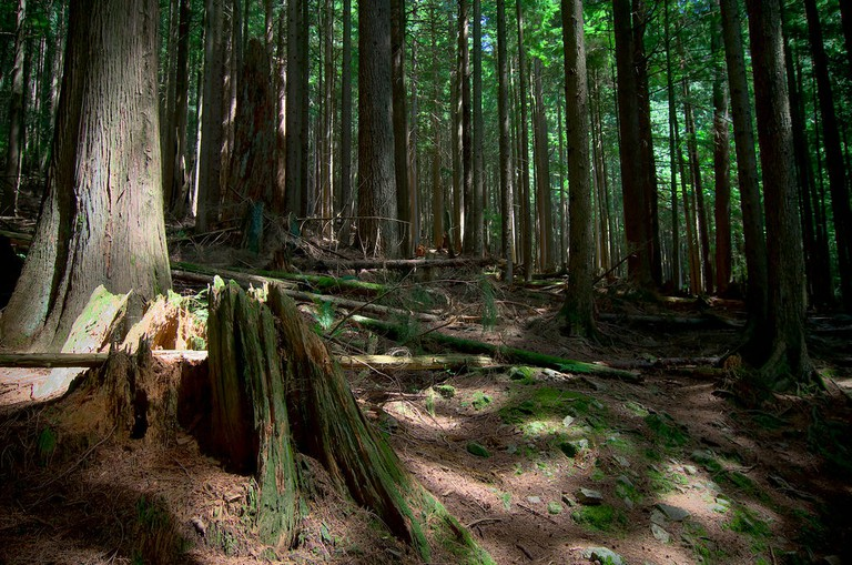 Grouse Grind – not for the fainthearted