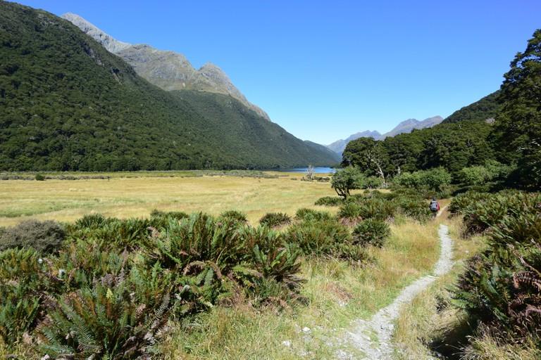 Greenstone Track, New Zealand