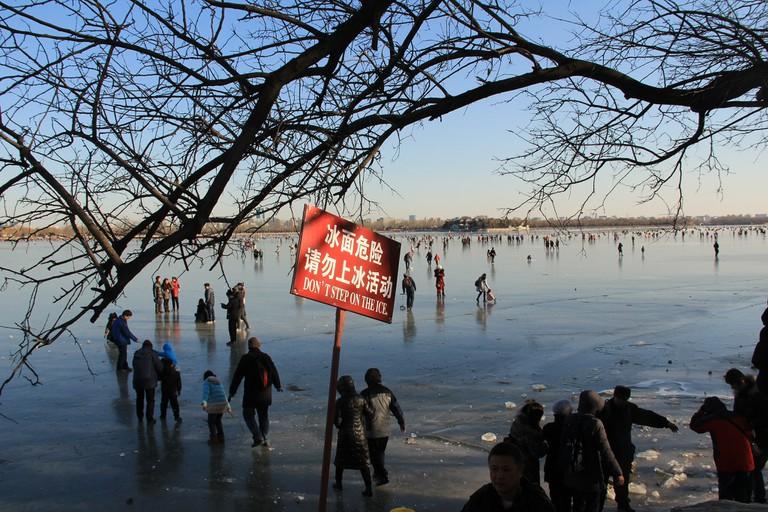 Persistent Visitors on Kunming Lake