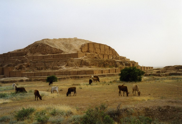 Cows graze in front of Chogha Zanbil, founded in 1250 BC | © Arian Zwegers / Flickr