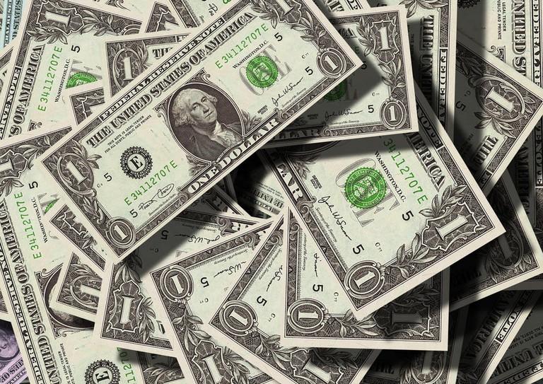 dollar bills /