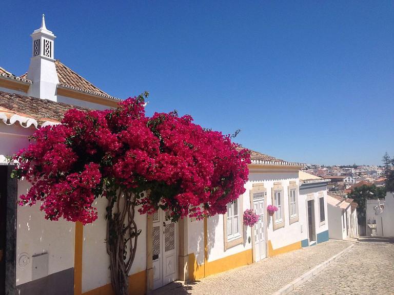 One of Tavira's beautiful streets.