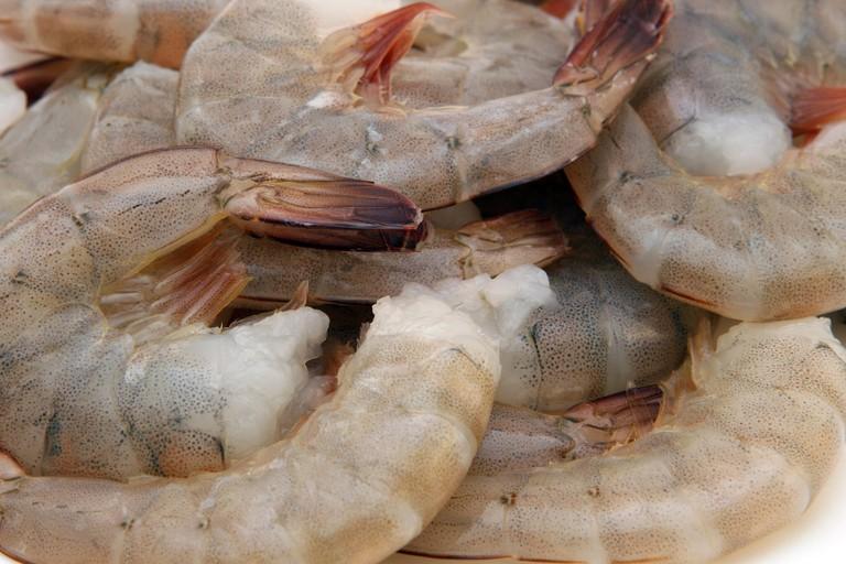 Grey shrimp   public domain / Pixabay