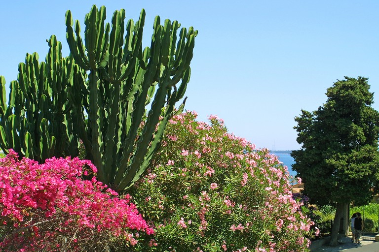 La Croix des Gardes, Cannes | © katatonia82 / Shutterstock