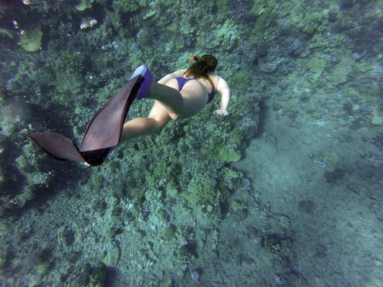 Snorkeling in Cancún