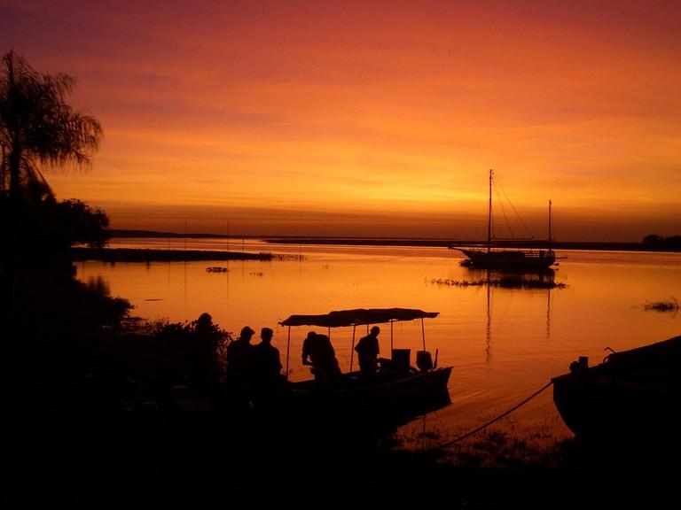 Amazon at sunset
