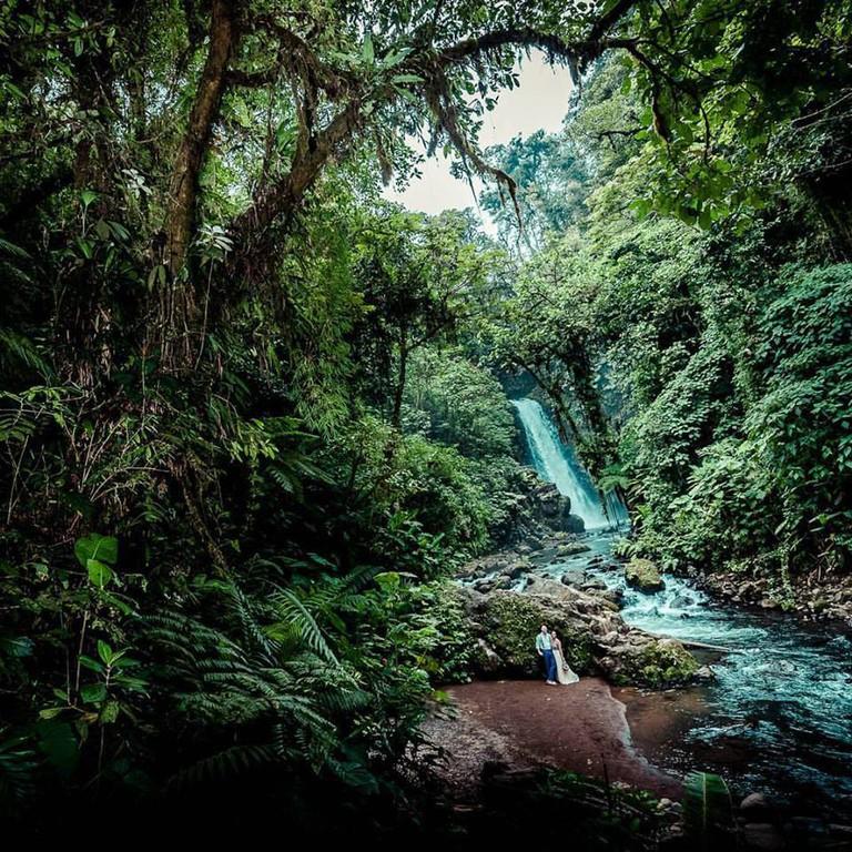 Love as deep as the jungle