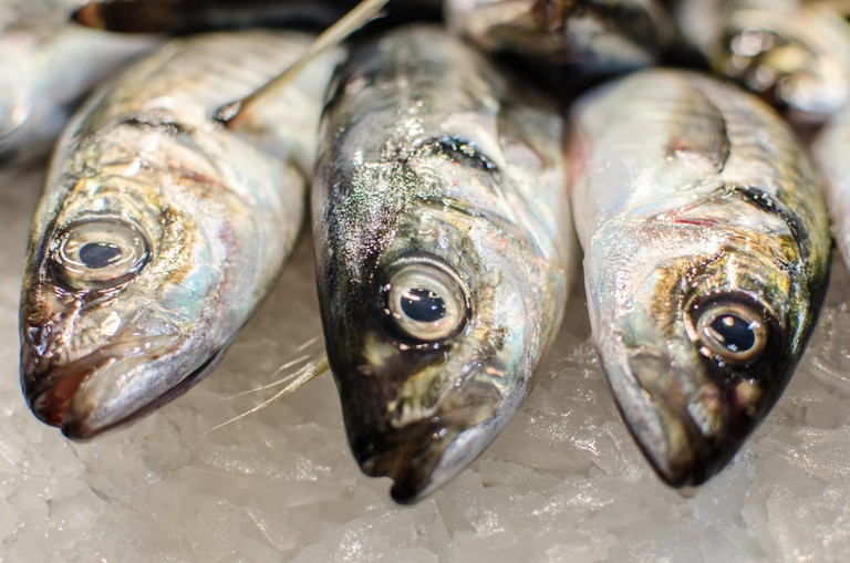 Fresh fish © Michele Ursino