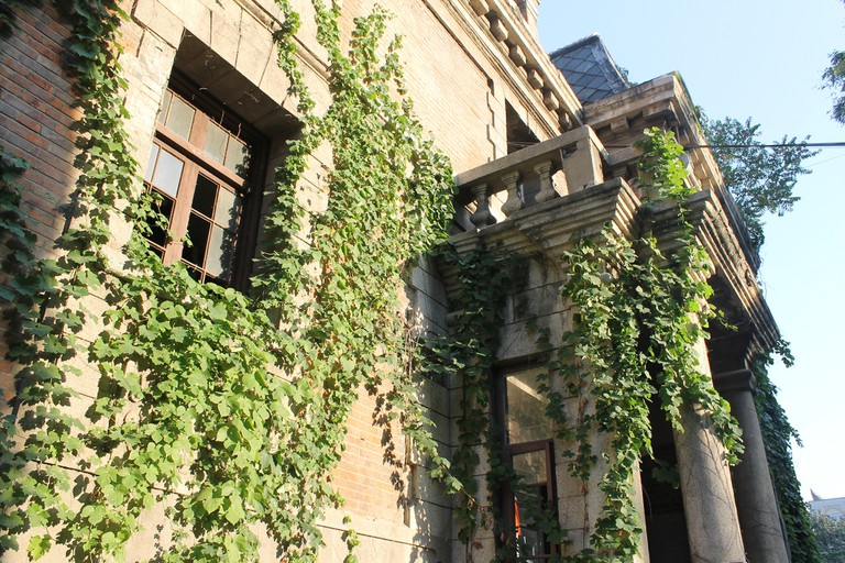The Ivy-covered Facade of Chaonei 81