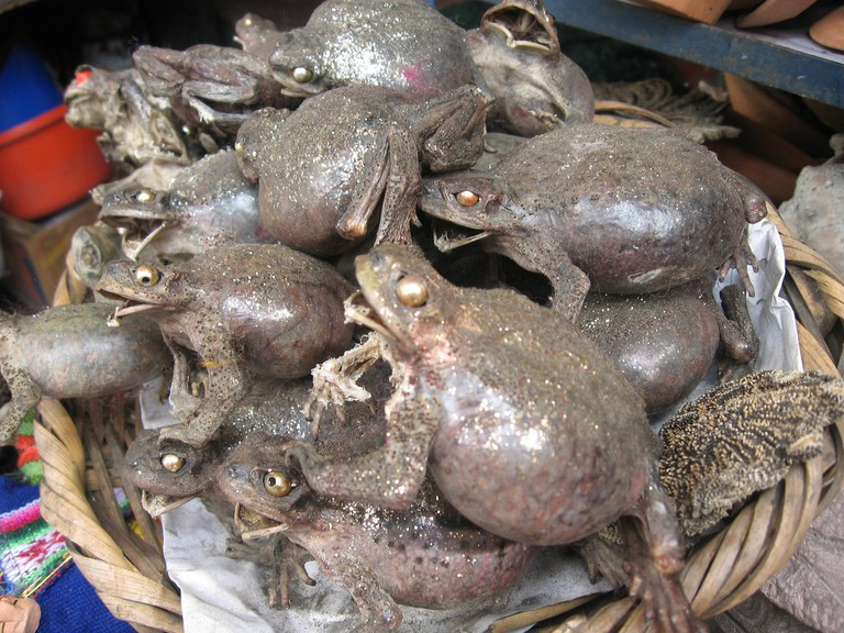 Dried frogs