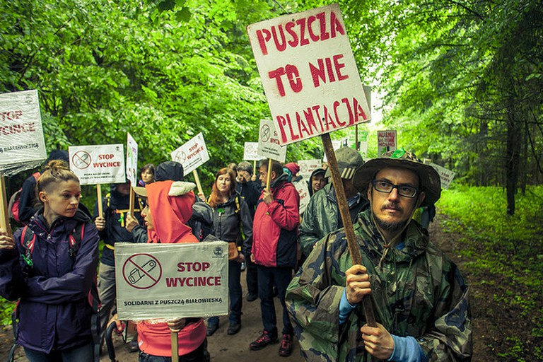 Protesters in Bialowieza forest