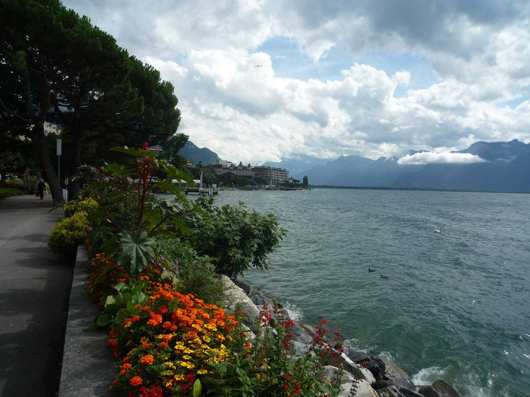 Cycle around Lac Léman (Lake Geneva) and enjoy spectacular views