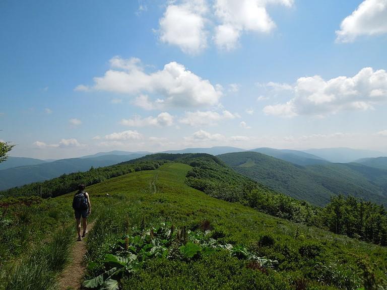 Hiking across mountain meadows in Poloniny
