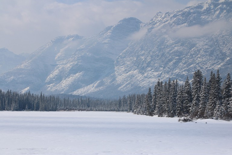 Winter in Alberta, Canada