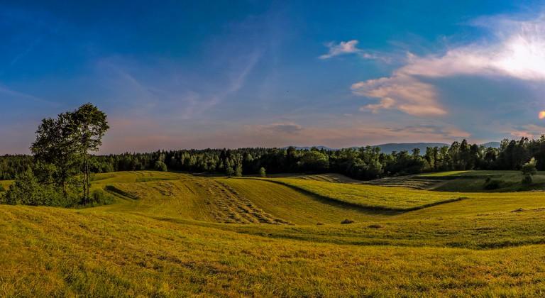 Landscape in Bela Krajina │
