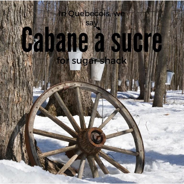 Cabane à sucre – Sugar shack