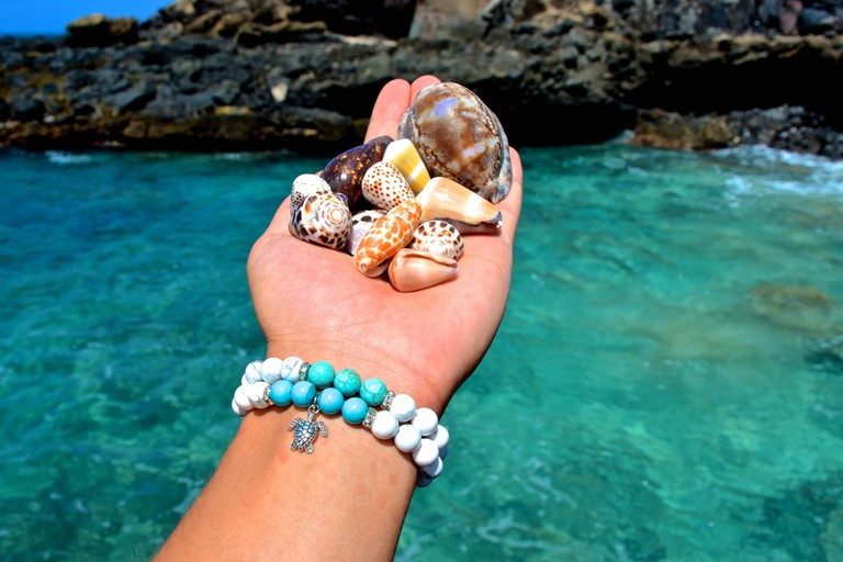 Found shells | © GE Keoni