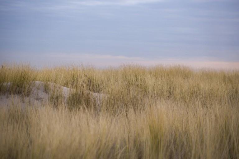 Kijkduin's windswept dunes are stunning