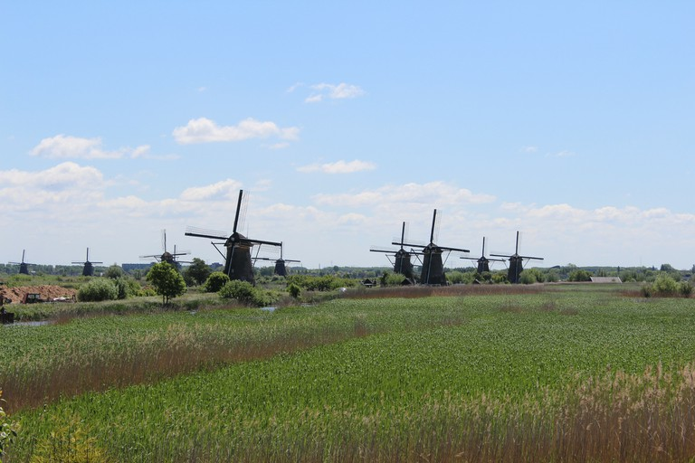 The mill network at Kinderdijk is truly stunning