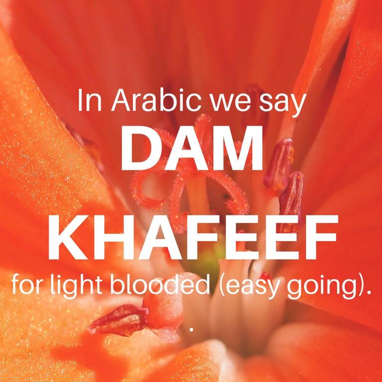 Dam Khafeef