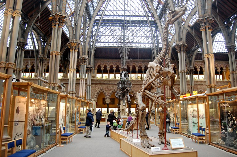 Oxford University Museum of Natural History | © Magnus D/Flickr