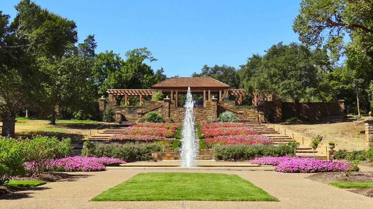 Rose Garden at Fort Worth Botanical Garden. Fort Worth, Texas