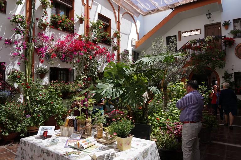 Córdoba's patios: UNESCO-protected paradises; Encarni Novillo