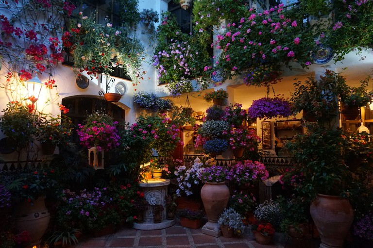 A flower-filled courtyard during Cordoba's Feria de los Patios
