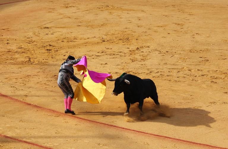 Bullfighting in Seville CC0 Pixabay
