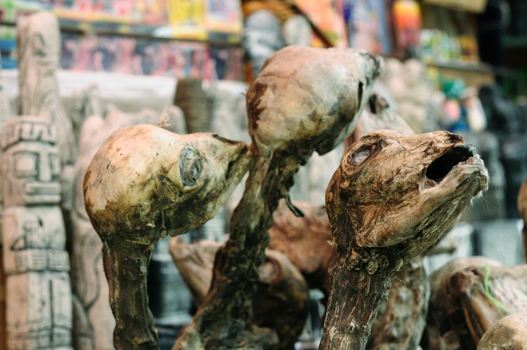 Dried llama fetuses at the Witches' Market