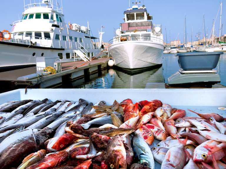 You can find amazing fish and seafood in the fish market in Marseille
