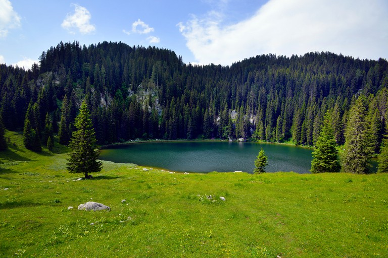 Planina by the Lake│
