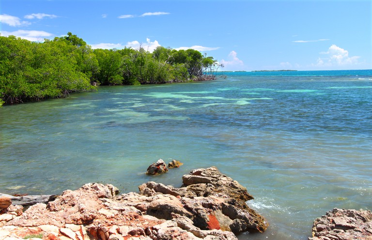 Guanica Forest Reserve