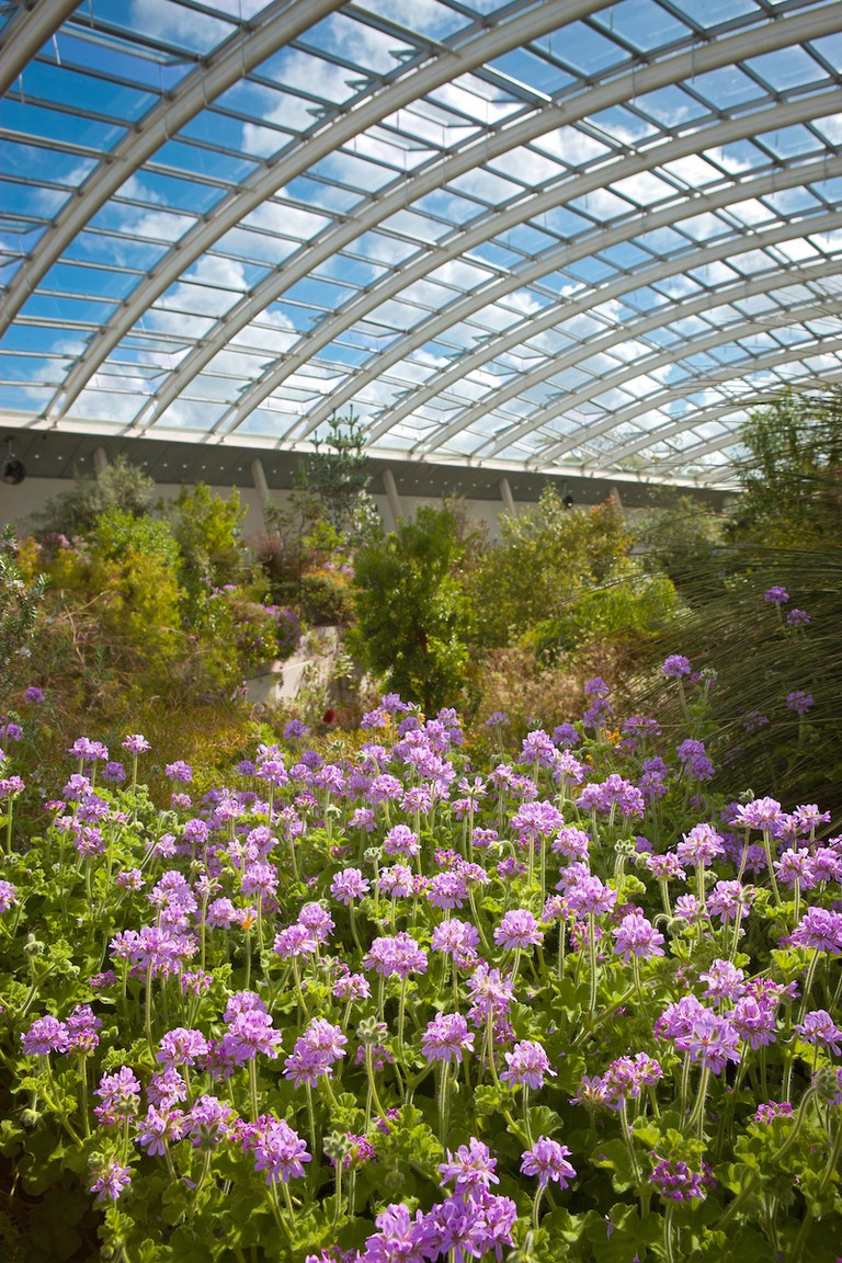 National Botanic Garden of Wales. Courtesy of Visit Wales