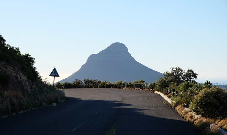 Lion's Head seen from Tafelberg Road