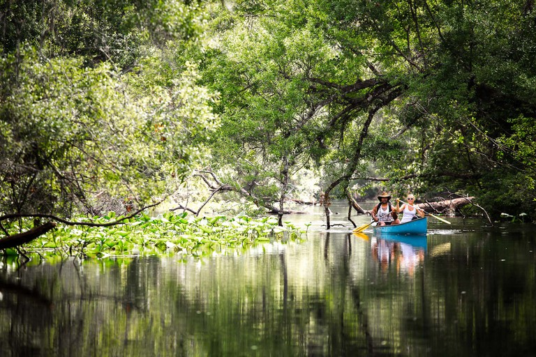 Kayaking at Wekiva Island