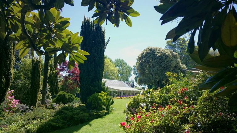 Wombat Hill Gardens