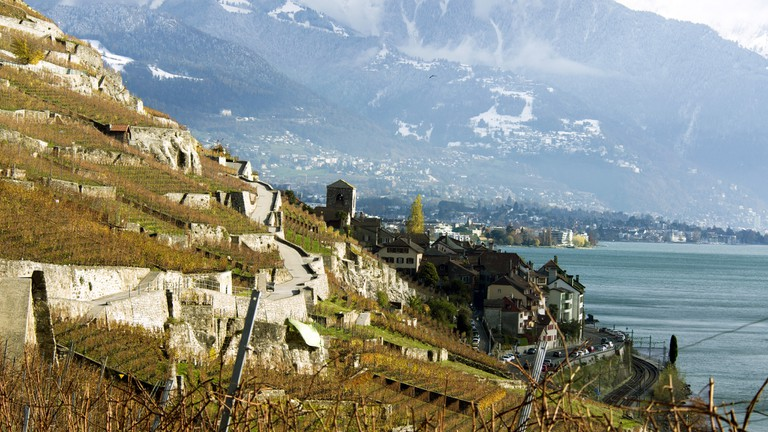 Lavaux's vineyard terraces