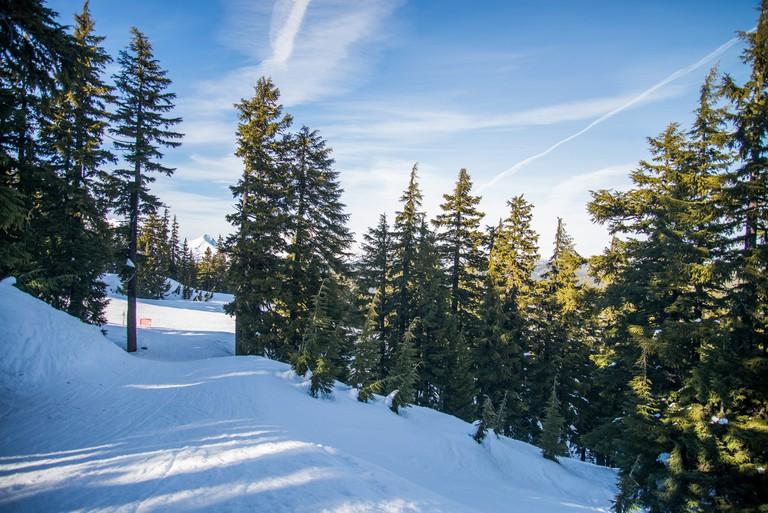Mount Bachelor Ski Area I
