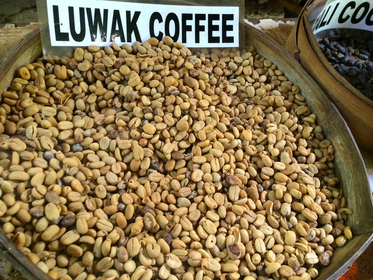 Luwak coffee, the most expensive coffee in the world│