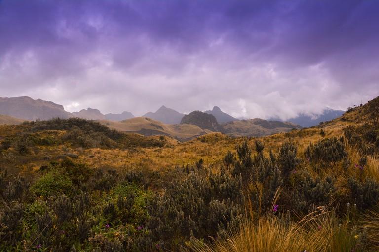"<a href=""https://www.flickr.com/photos/43555660@N00/16461018236/"" target=""_blank"" rel=""noopener noreferrer"">Cayambe Coca National Park, Ecuador"