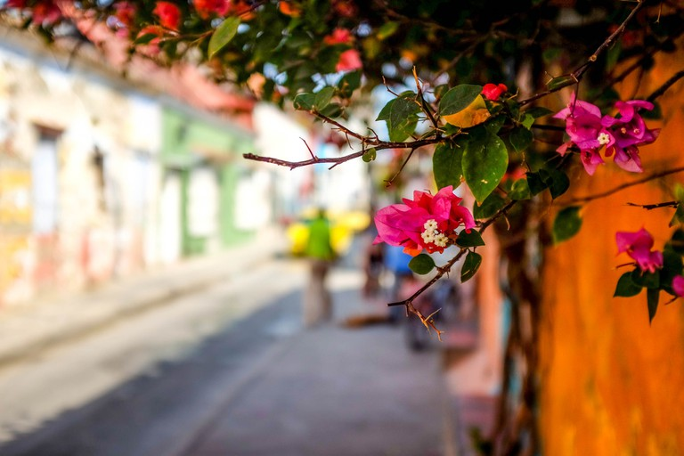 Cartagena is a beautiful city for artists and photographers