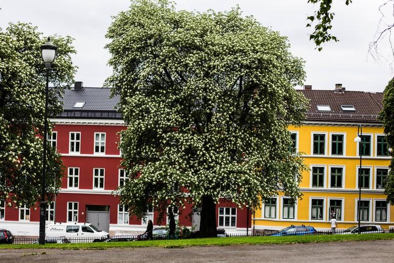 Buildings in Old Oslo