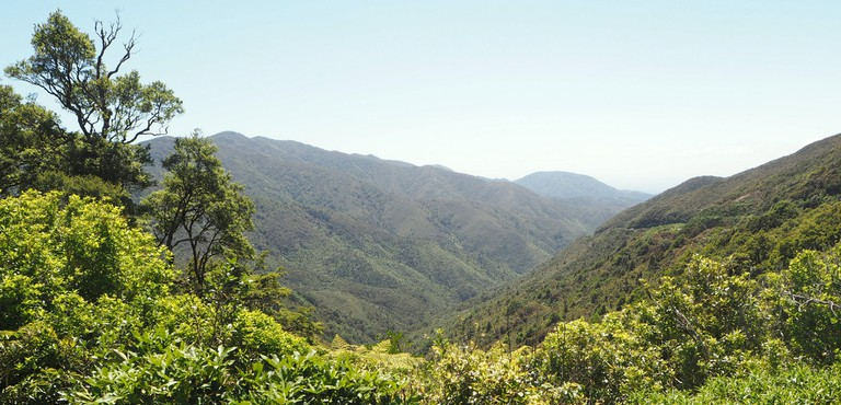 View from the Rimutaka Crossing