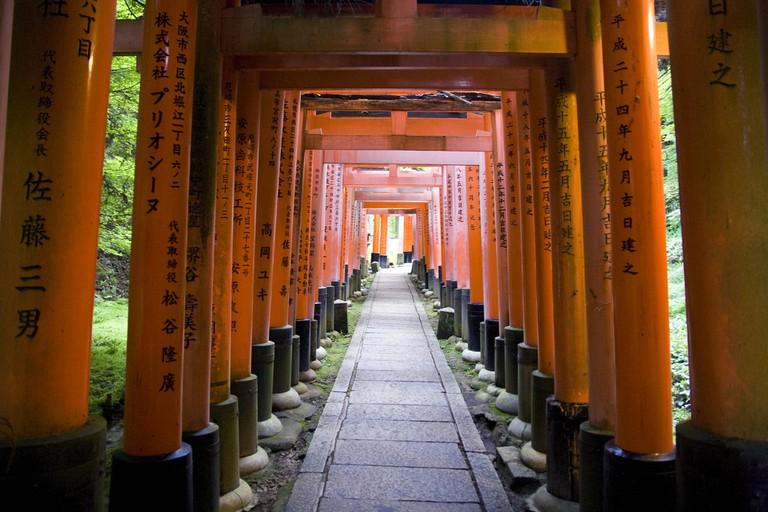 Torii gates of Fushimi Inari