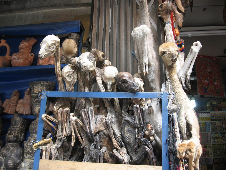 Dried llama fetuses up for sale