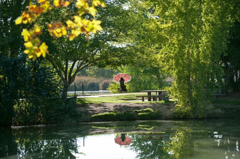Floyd Lamb Park | © Andrew/Flickr